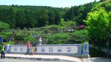 11:49 鍋島藩窯橋。向こうのお墓に陶工の墓があるのかな?