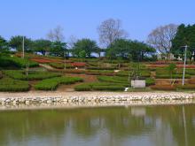 8:51 佐用姫橋から見た、 鏡山池とつつじ園
