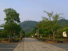 6:56 稲佐山もよく見えます。