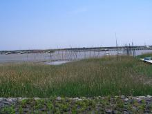 13:23 芦刈海岸の風景 ・・・ 想像とちょっと違ったわ