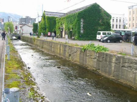 ここの川でサケの遡上を見れました(*^_^*)