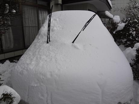 8904_SNOW