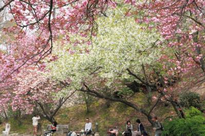13_0414_BotanicalGarden_5Dm200003.jpg