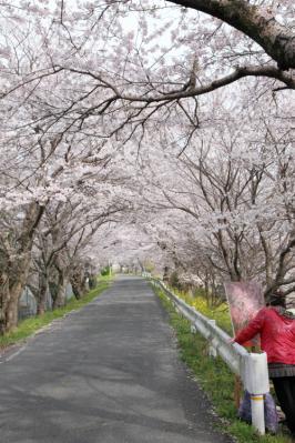 13_04_02_IwakuniOkan_5Dm20006.jpg