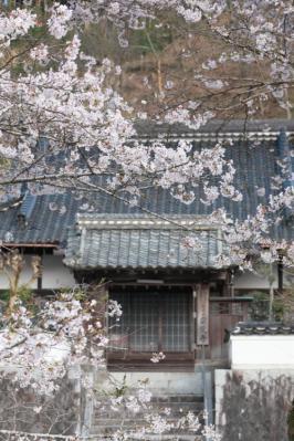 13_04_02_MishoSokakuji_5Dm20006.jpg