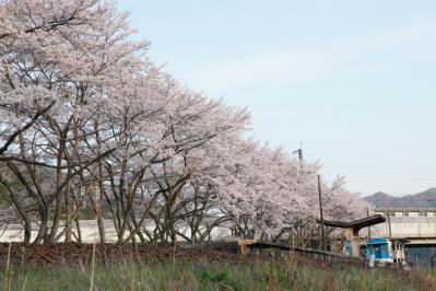 13_04_02_MishoStation_5Dm20004.jpg