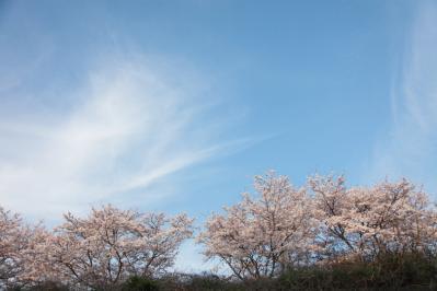 13_04_02_MishoStation_5Dm20005.jpg