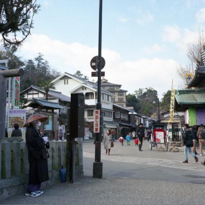 20130210_Miyajima_Rolleiflex28F_Ektar__13.jpg