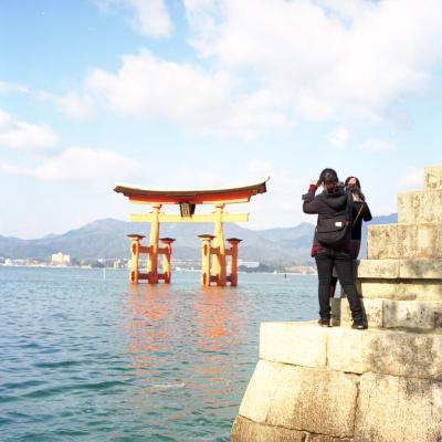 20130210_Miyajima_Rolleiflex28F_Ektar__5.jpg