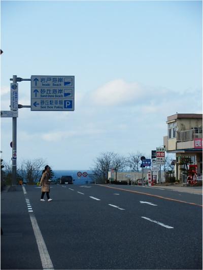鳥取砂丘_道