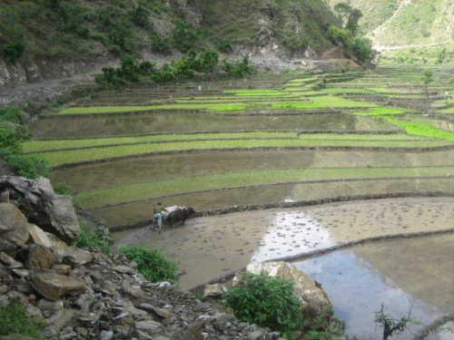 Bajhang view6
