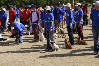 犬祭り-1