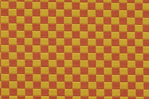 Checker459830