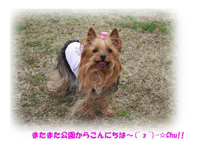 IMG_3983.jpg