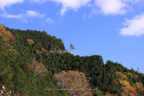 梅ヶ島02