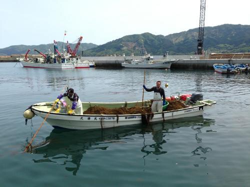 koishihamayoshihama (3)