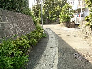 nakayama-j1-6.jpg