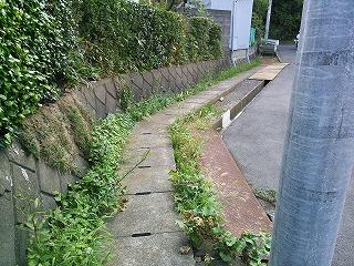 nakayama-j2-3.jpg