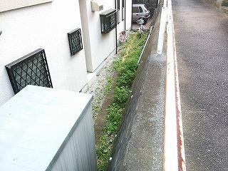 nakayama-j2-6.jpg