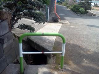 nipa-sugiyama2.jpg