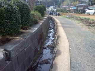 nipa-sugiyama5.jpg