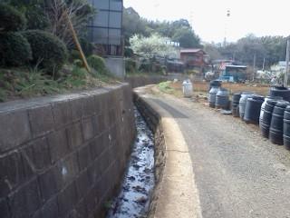 nipa-sugiyama6.jpg