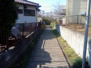 ookuma-9.jpg