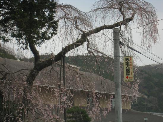 2013.3.25三重県