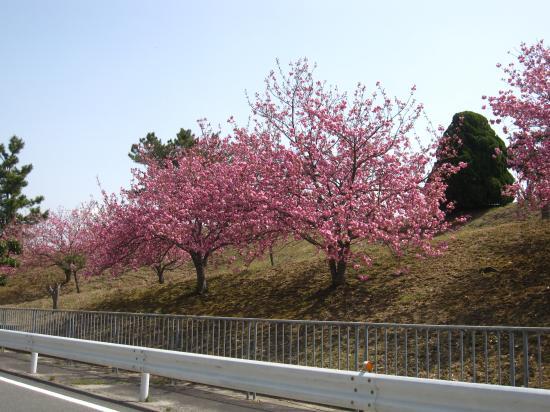 2013.4.18兵庫4