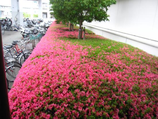 2013.5.28静岡