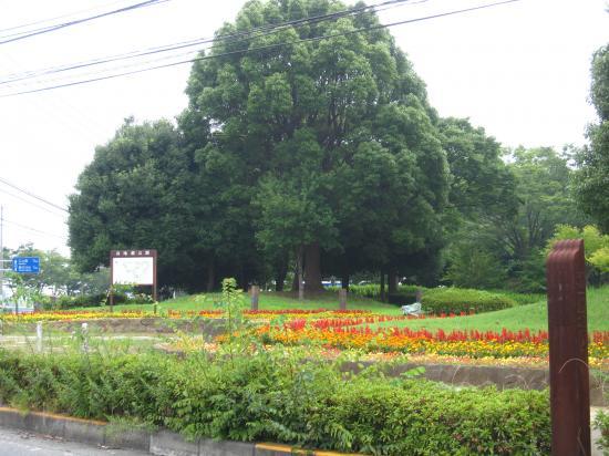 2013.7.23神奈川2