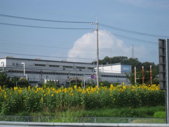 2013.8.19兵庫5