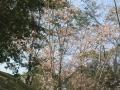 2013.10.15愛知・岐阜1