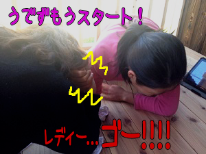 201305142.png