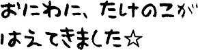201305171a.png