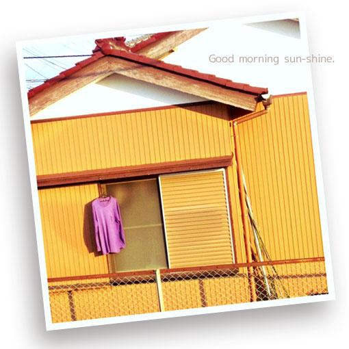 紫のシャツ