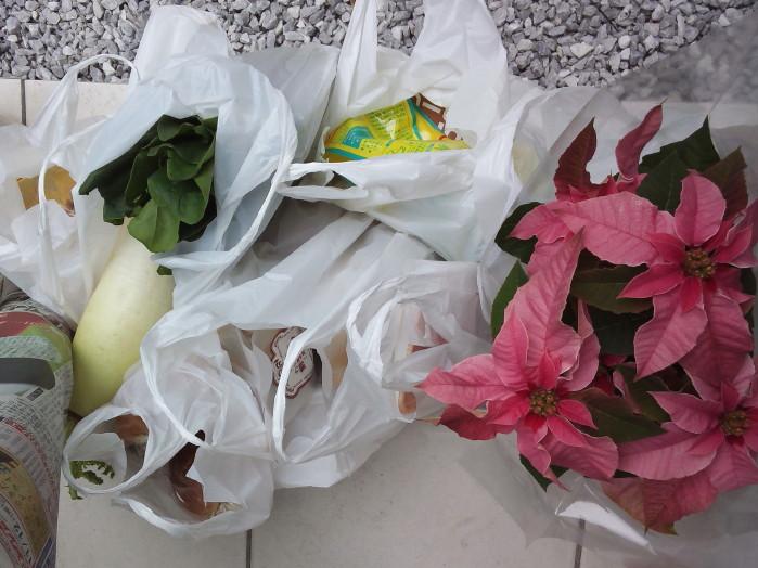 買い物♪NCM_0078_1