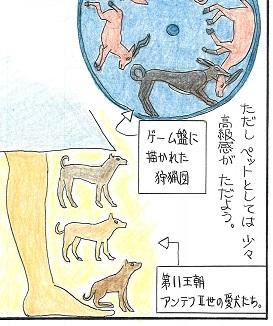Dogs_120516_002.jpg
