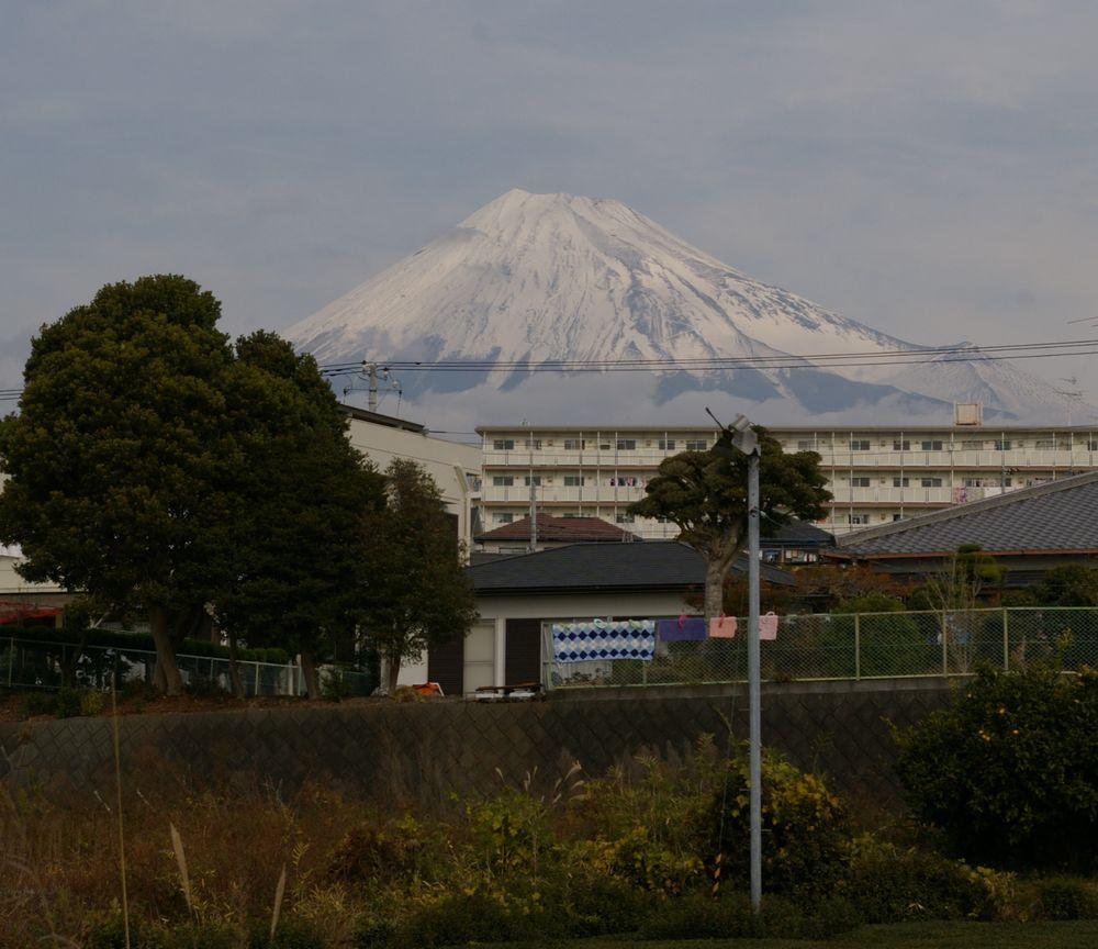 fuji1130c1.jpg