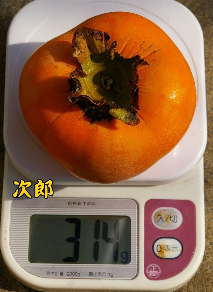jiro1107c2.jpg
