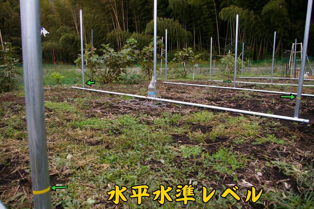 suihei1105c2.jpg