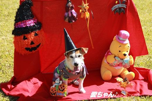 吉野ヶ里遺跡その1 2014-10-18-4