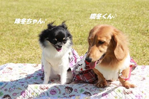 吉野ヶ里遺跡その1 2014-10-18-7