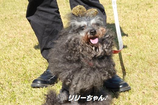 吉野ヶ里遺跡その2 2014-10-18-4