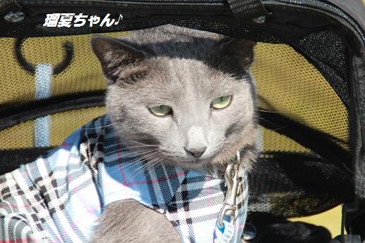 吉野ヶ里遺跡その2 2014-10-18-9