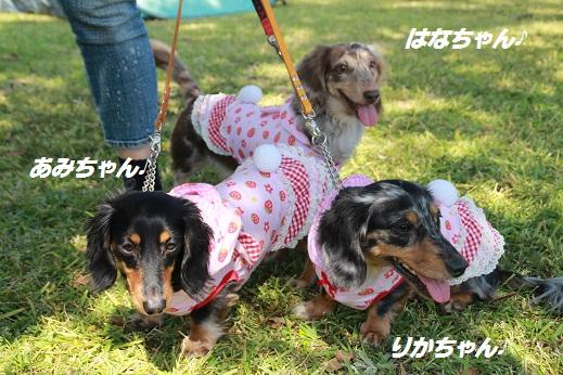 吉野ヶ里遺跡その1 2014-10-19-2
