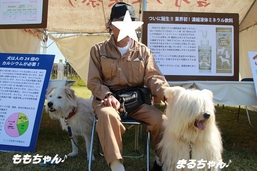 吉野ヶ里遺跡その1 2014-10-19-6