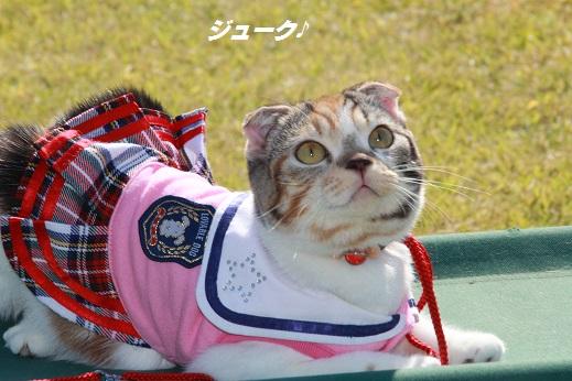 吉野ヶ里遺跡その2 2014-10-19-4