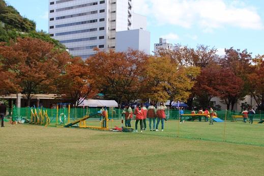 どうぶつ愛護フェスティバル 2014-11-3-4
