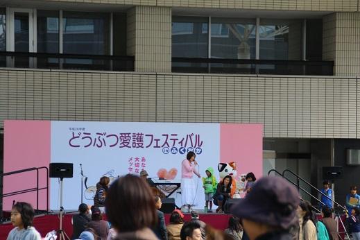 どうぶつ愛護フェスティバル 2014-11-3-6